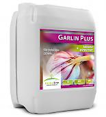 Garlin Plus